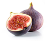 Clipart Of Fig Tree With Fruits Image