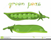 Free Clipart Peas In A Pod Image