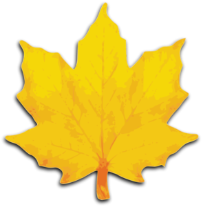 M Leaf Vector Clipart Image