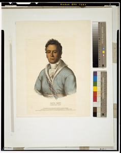 David Vann. A Cherokee Chief  / Drawn, Printed And Col D At The Lithographic & Print Colouring Establishment, No. 94 Walnut St., Phila. Image