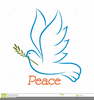 Clipart Dove With Olive Branch Image