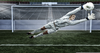 Hope Solo Diving Image
