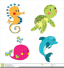 Cartoon Ocean Animals Clipart Image
