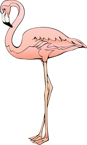 Flamingo Clip Art. Flamingo