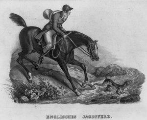 English Hunting Horse Image