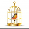 Bird Cages Clipart Image
