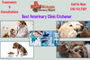 Affordable And Best Veterinary Clinic Kitchener West Heights Vet Image