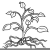 Plants Black And White Clipart Image