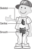 Kid Standing Showing Organs Clip Art