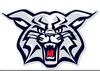 Free Wildcat Football Clipart Image