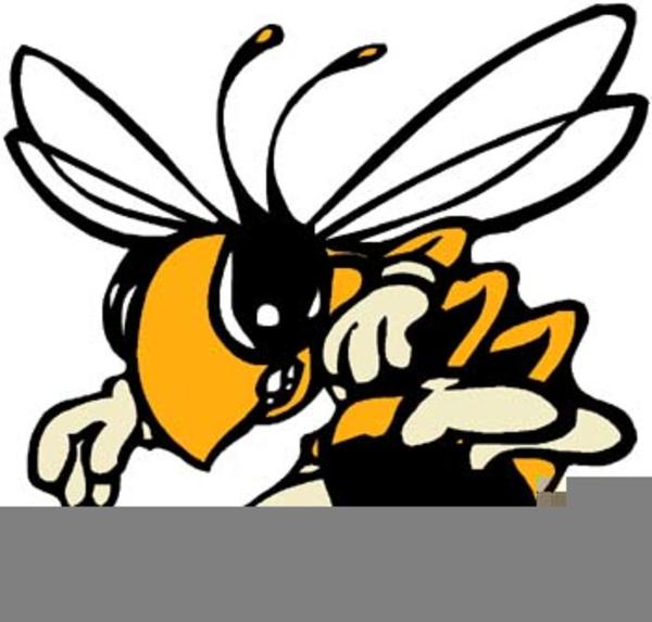 Free Hornet Mascot Clipart Free Images At Clker Com Vector Clip