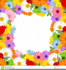 Free Clipart Thank You Flowers Image