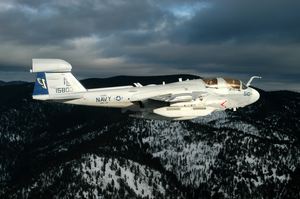 An Ea-6b  Prowler  From Electronic Attack Squadron One Twenty Eight (vaq-128) In Flight Near The Northern Cascade Mountains Image