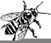 Honey Bee Clipart Black And White Image