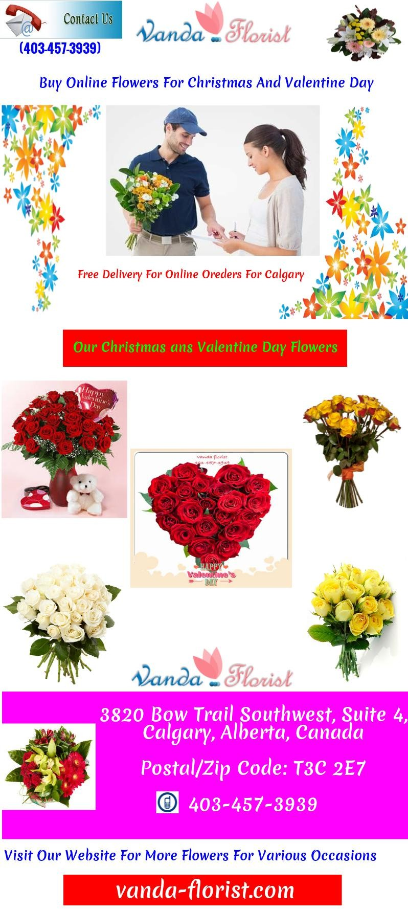 Buy Online Flowers For Christmas And Valentine Day Free Images At
