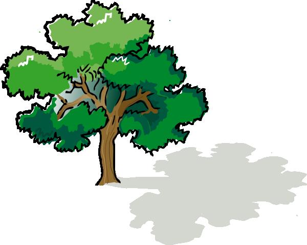 Oak Tree Clip Art At Clker Com Vector Clip Art Online Royalty