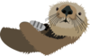 Otter With Shell  Clip Art