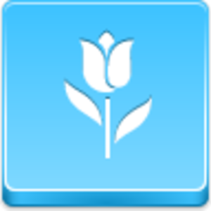 Free Blue Button Icons Tulip Image
