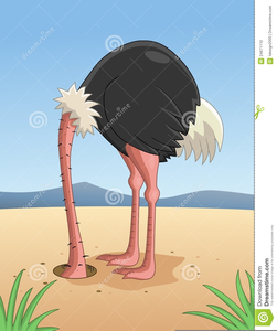 Ostrich Head In Sand Clipart Image