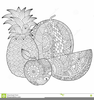 Free Pineapple Clipart Black And White Image