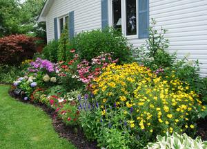 Delicieux Garden Design Ideas X Cottage Garden Design Ideas Garden Idea Moyuc Com  Image