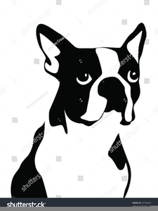 Free Puppy Clipart Download Image