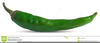 Green Chili Pepper Clipart Image