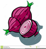 Free Food Clipart Purple Onion Image