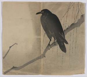 Crow On A Willow Branch. Image