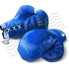 Boxing Gloves Blue 3 Image