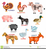 Farm Animal Clipart Cartoon Sheep Horse Image