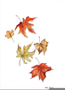 Leaves Falling Drawing Image