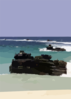 Armored Amphibious Vehicles (aav) Land On Blue Beach Vieques. Clip Art