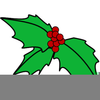 Holly Berry Clipart Free Image