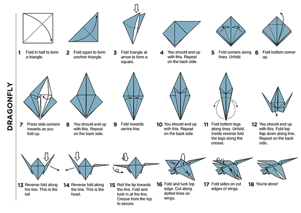 Origami Dragonfly Diagram Choice Image