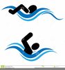 Kids In Swimming Pool Clipart Image