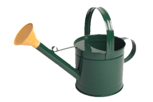 Watering Can Lisa Image