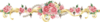 Divider Line Flowers Roses Pink Bouquet Image