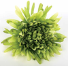 Artificial Silk Green Spider Mum Floral Bush Image