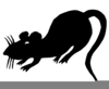 Clipart Pictures Of Rats Image