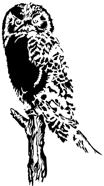 Owl On Branch clip art - vector clip art online, royalty free ...