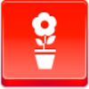 Free Red Button Icons Pot Flower Image