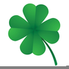 Clipart Of Four Leaf Clovers Image