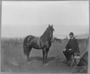 Man Sitting Infront Of Horse Image
