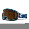 Canopy Goggles Image