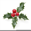 Ivy Christmas Clipart Image