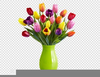 Clipart Tulips Spring Flowers Image