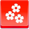 Free Red Button Icons Flowers Image