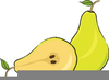 Pears Clipart Image