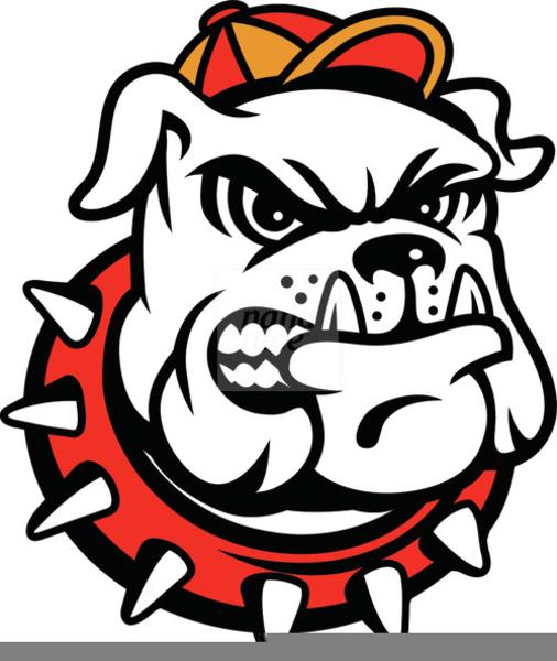 Georgia Bulldog Mascot Clipart Free Images At Clkercom Vector